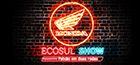 Infomercial - Ecosul Show