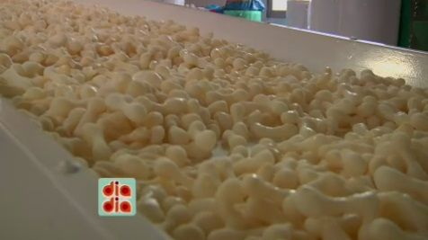 Descubra como é fabricado o Biscoito de Polvilho