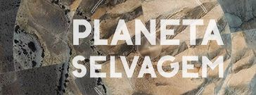 Planeta Selvagem