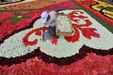 Israelense finaliza o tapete de flores