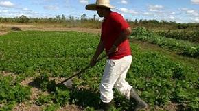 Senar Mato Grosso promove debate sobre inovações na educação rural