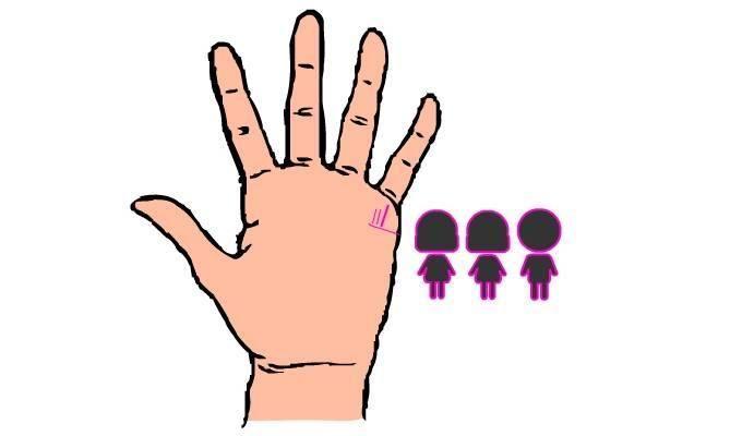 linha das mãos 1