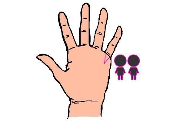 linha das mãos 2
