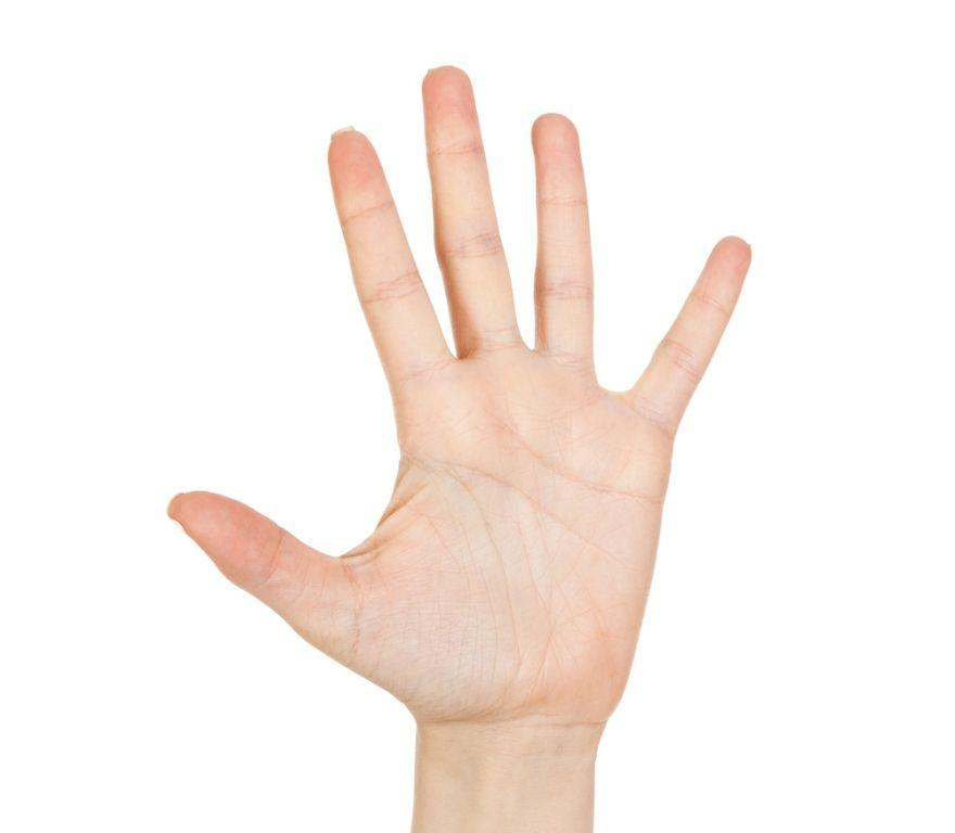 Saiba quantos filhos você terá através das mãos / Shutterstock