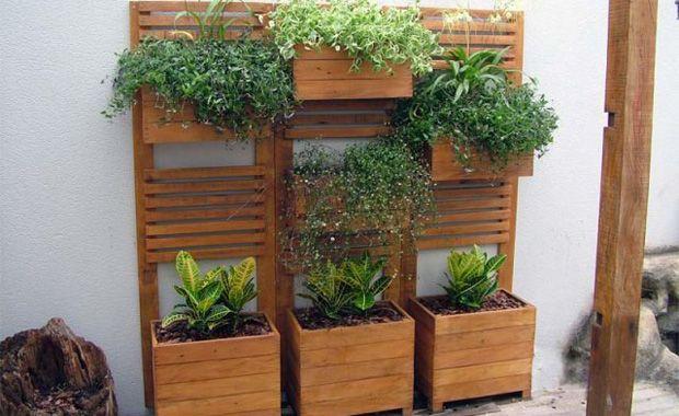 jardim vertical externo:Jardim Vertical