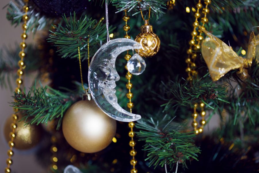 Ávore de Natal tem origem em costumes pagãos / Lia Koltyrina/Shutterstock