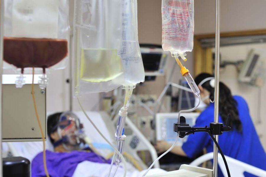 Técnica recupera os linfócitos T, as principais células do sistema imunológico / Shutterstock
