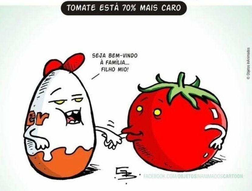 Preço do tomate vira motivo de piada na internet; veja imagens