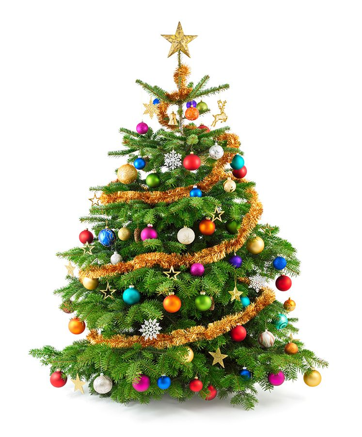 É a hora de montar a árvore de Natal; veja significado dos enfeites