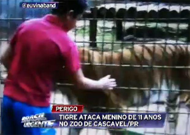 Menino foi filmado com mão dentro da jaula / Reprodução/Band