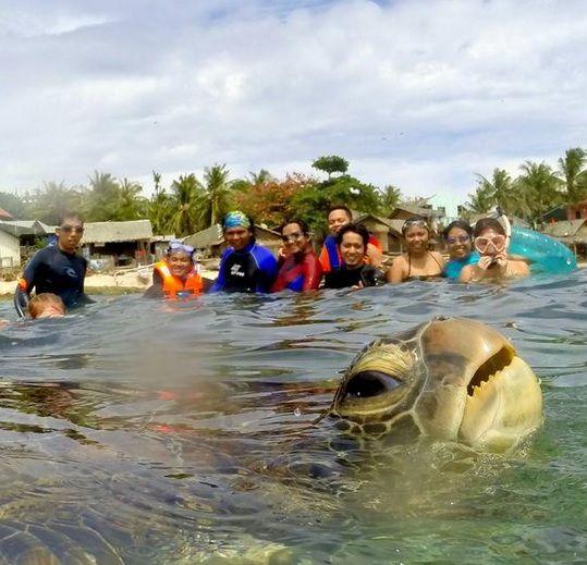 Tartaruga invade selfie de turistas / Reprodução/Twitter/Diuvs de Jesus