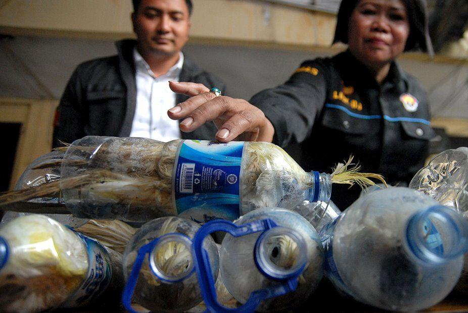 Polícia intercepta carga com 22 garrafas