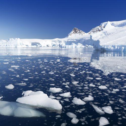 Degelo na Antártida  / Foto: Shutterstock