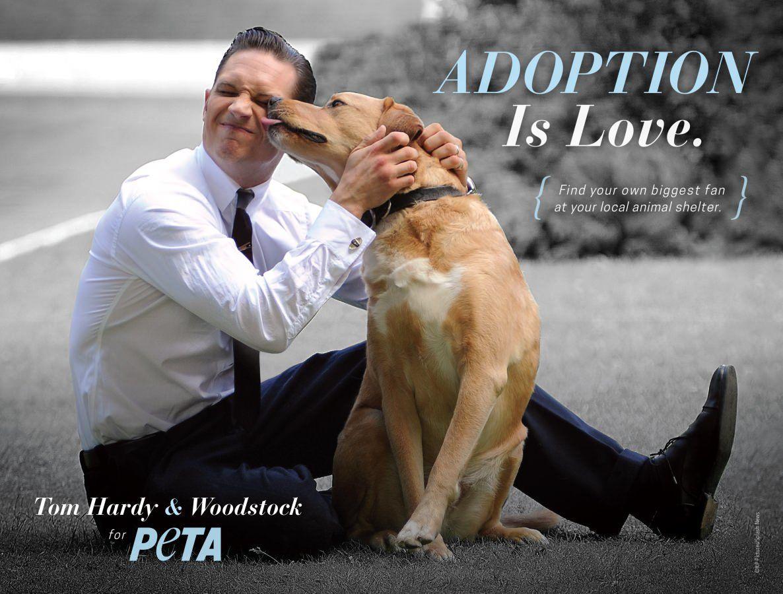 Tom Hardy posou para campanha com seu cachorro, Woodstock / Divulgação/PETA