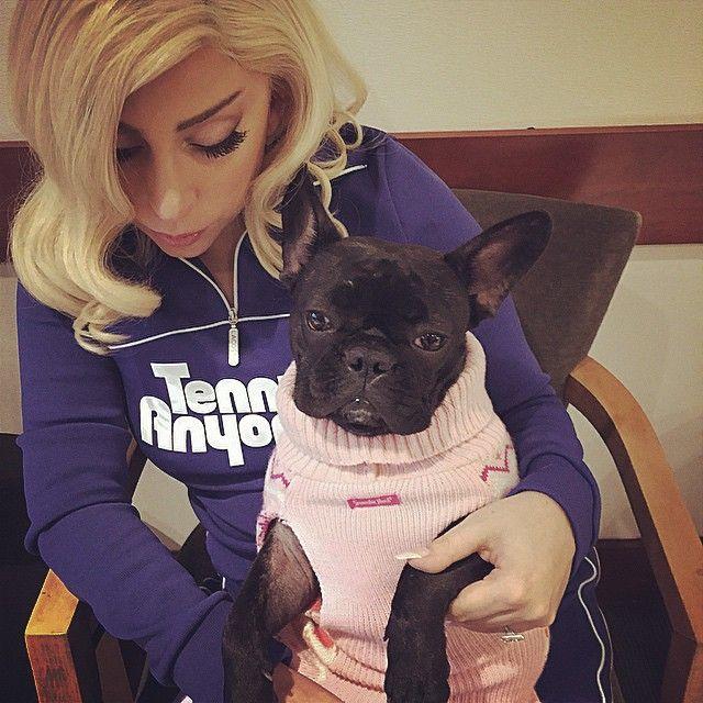 Lady Gaga e Miss Asia Kinney anunciam linha de roupas e comidas para pets  / Divulgação/Instagram