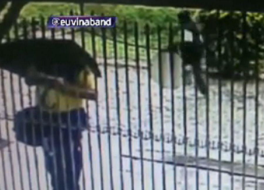 Suspeito foi identificado pela câmera de segurança de uma residência vizinha / Reprodução/Brasil Urgente