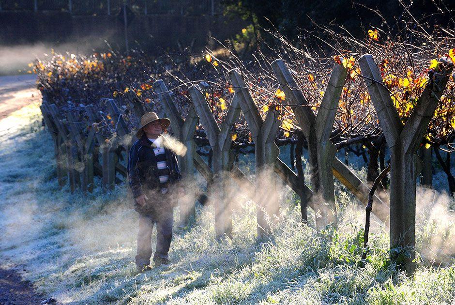 Vento gelado ainda dá sensação maior de frio, segundo o Inmet  / Roni Rigon/Agência RBS/Folhapress