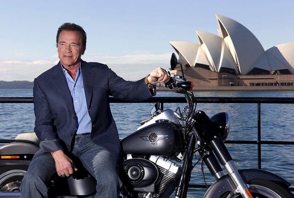Schwarzenegger diz que está mais velho, mas não obsoleto / David Gray/Reuters