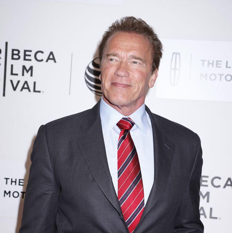 Schwarzenegger diz que Miley é fantástica / Sam Aronov/Shutterstock.com