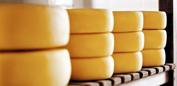 Queijos gordurosos melhoram colesterol bom, diz pesquisa