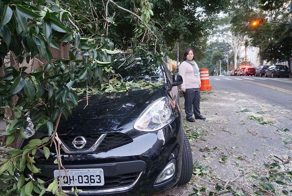 Árvore caiu em cima de um carro e sobre a fiação / Robson Souza/Futura Press/Folhapress
