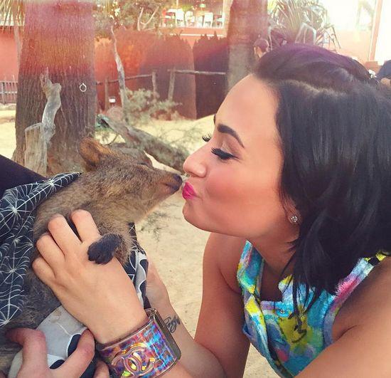 Demi Lovato apareceu em momento fofo na web / Divulgação/Instagram