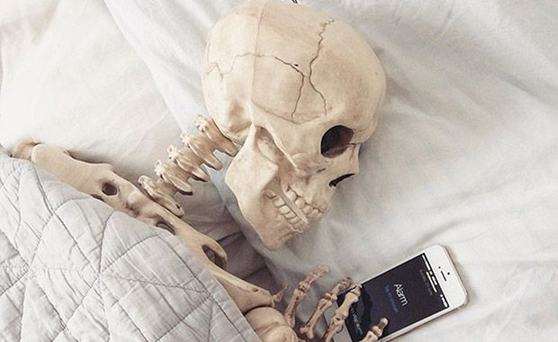 esqueleto fotos