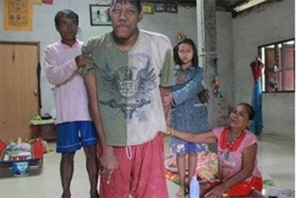 Saosri tinha 2,69 metros de altura  / Bangkok Post/Reprodução