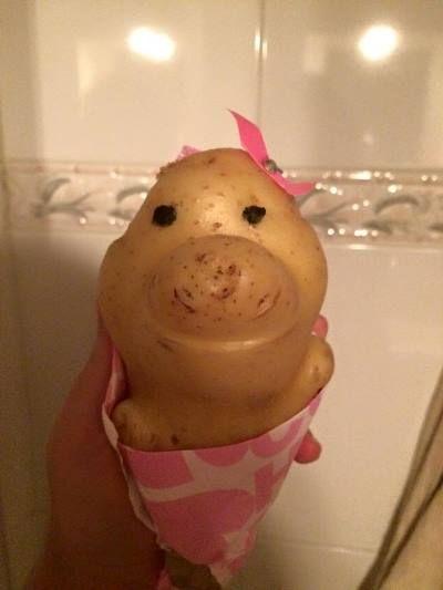 Jovem adota batata como amiga