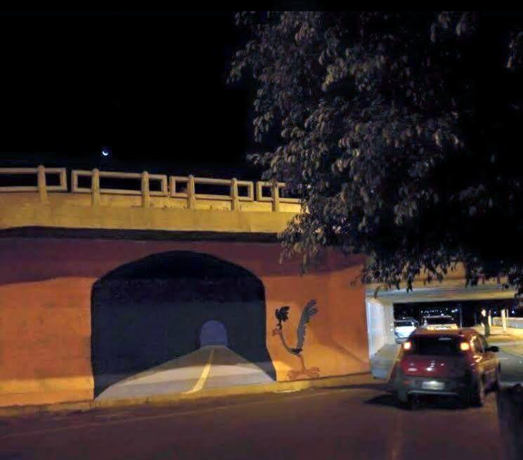 Túnel do Papa-Léguas é coberto para evitar acidentes