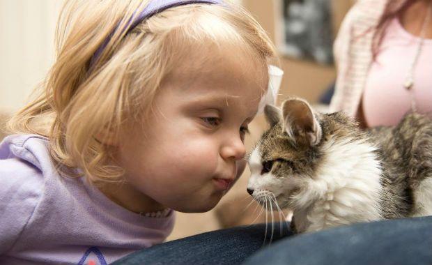 Menina amputada adota gato sem uma das patas