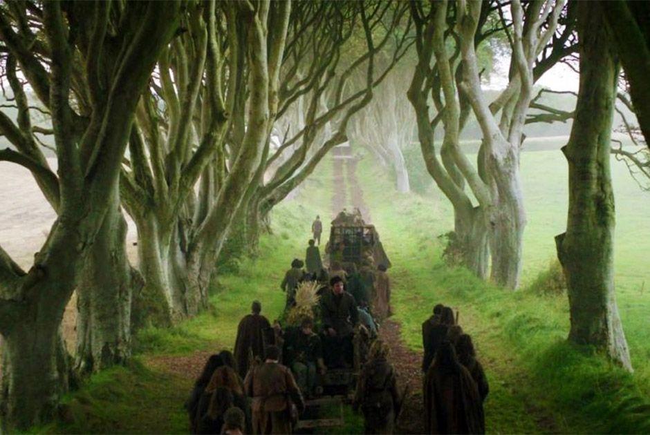 Tempestade arranca árvores de Game of Thrones na Irlanda