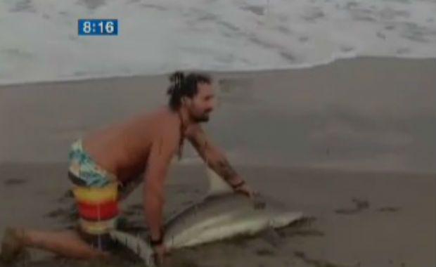 Homem tira tubarão da água para fazer selfie