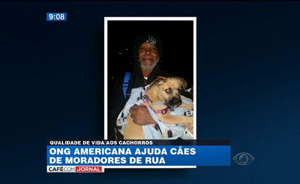 ONG americana ajuda cães de moradores de rua