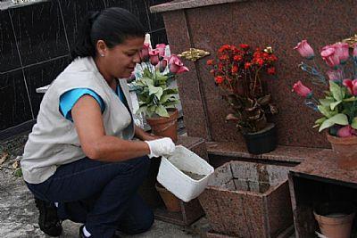 Sábado tem arrastão contra dengue na região central de São José
