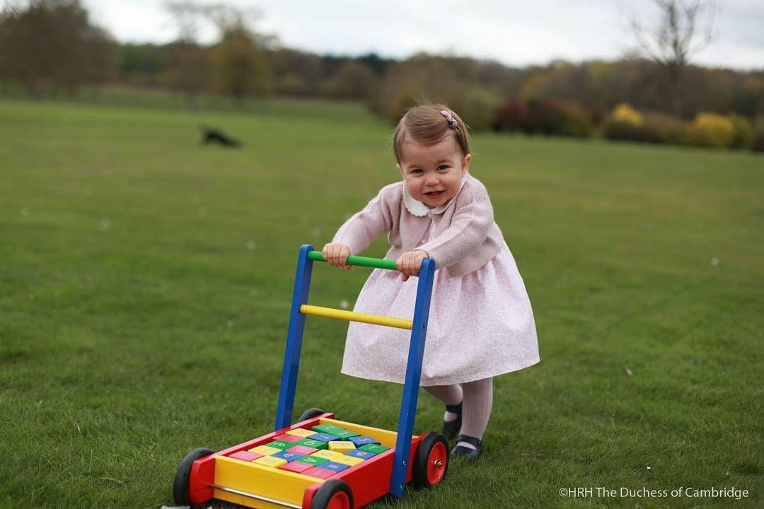 Princesa Charlotte gosta de brincar com hamster da família