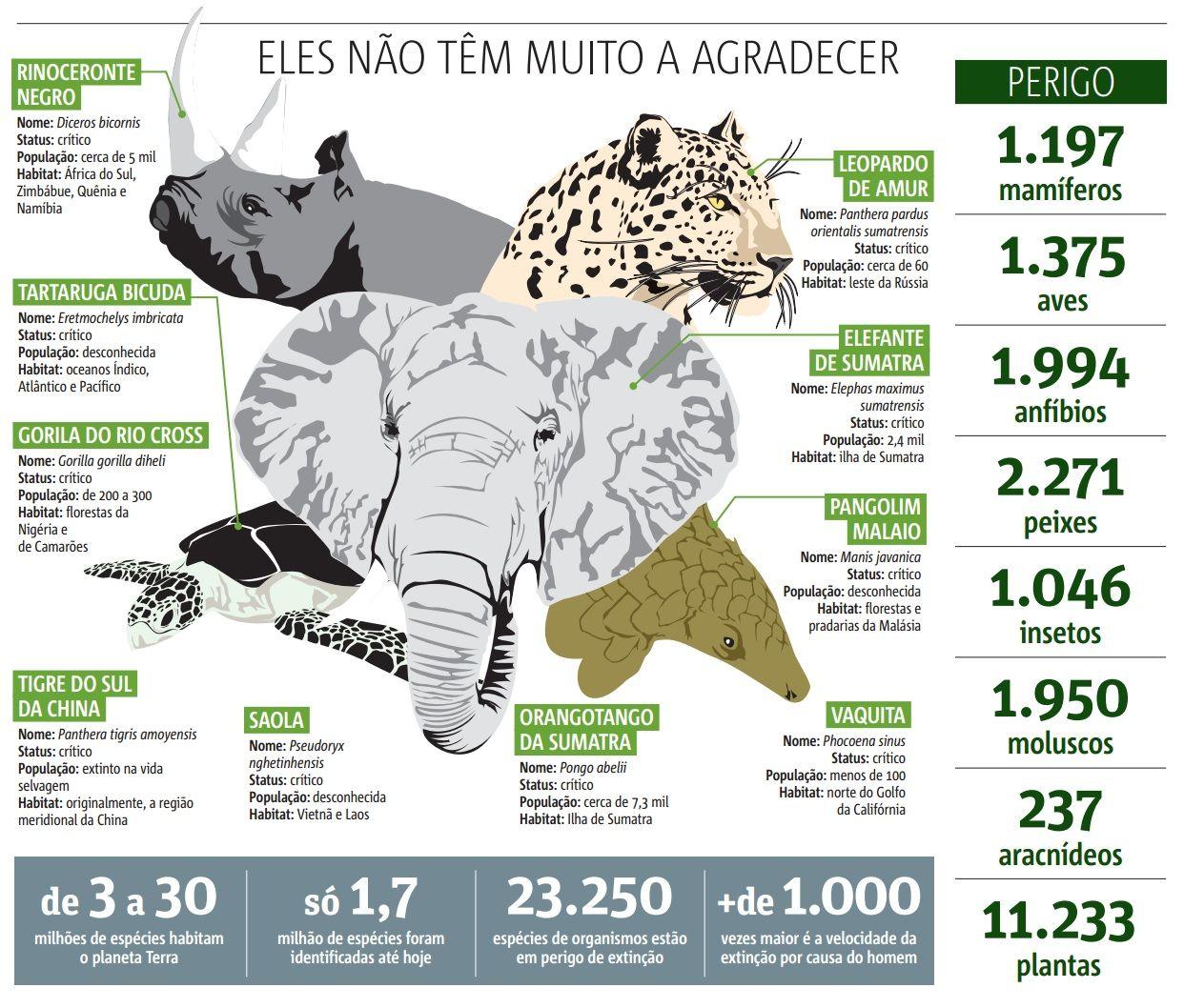 info animais risco extinção