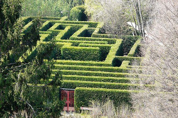 Conheça os cinco labirintos mais bonitos da Itália