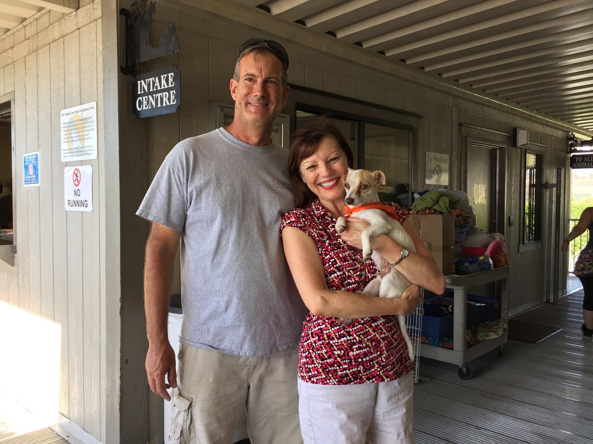 Cachorro foi adotado após meses de tratamento / OC Animal Care/Facebook/Divulgação