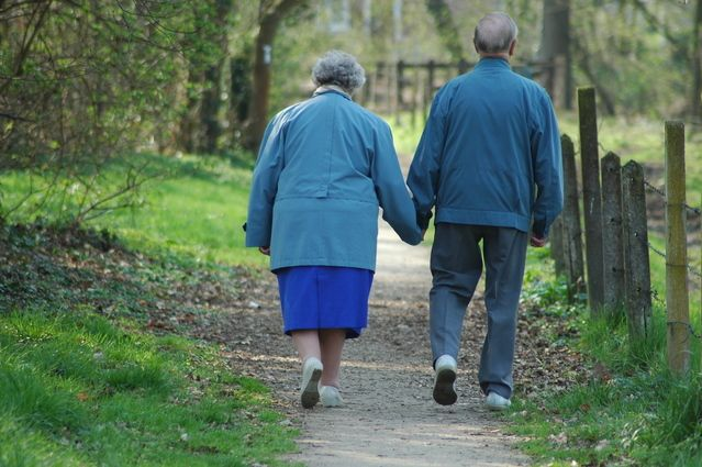 Pesquisa de brasileiro pode reduzir Alzheimer e Parkinson