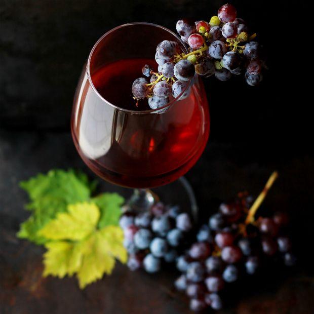 Casa de vinhos é opção turística para passeio em Nova Petrópolis