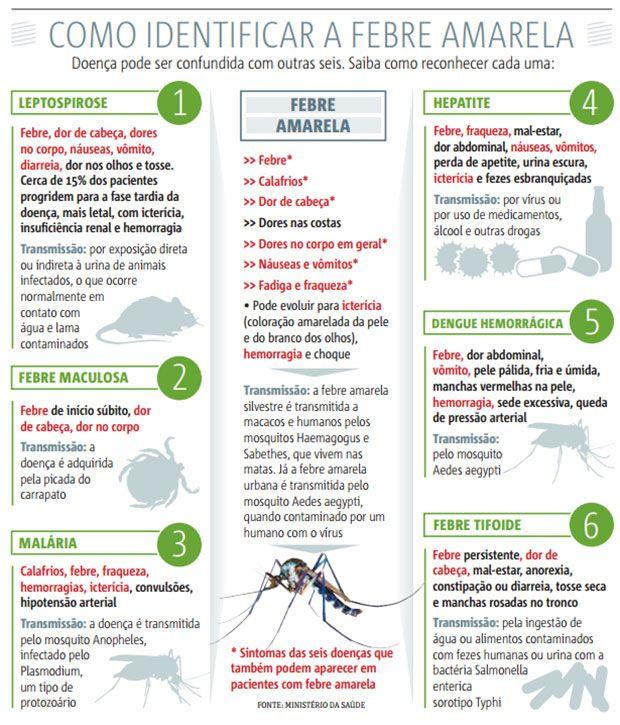 Infográfico como identificar febre amarela