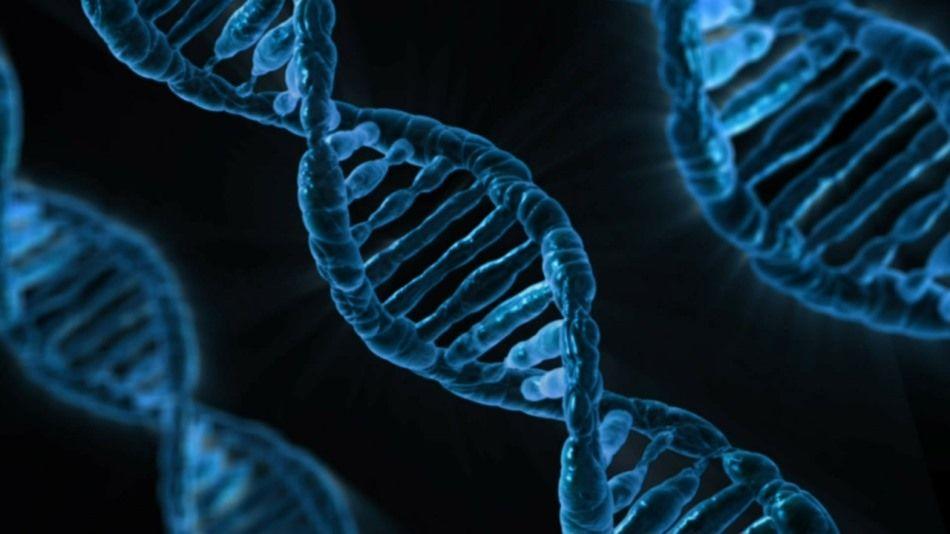Itália cria teste capaz de mapear riscos de câncer