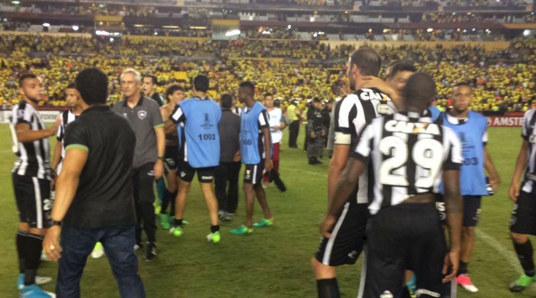 Jogadores do Botafogo comemoram o empate no fim no Equador / Divulgação/Botafogo