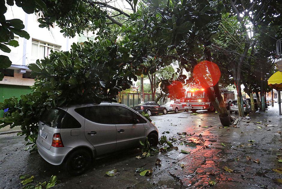 Queda de árvore atingiu um veículo na rua Conde de São Joaquim / Nelson Antoine/Estadão Conteúdo