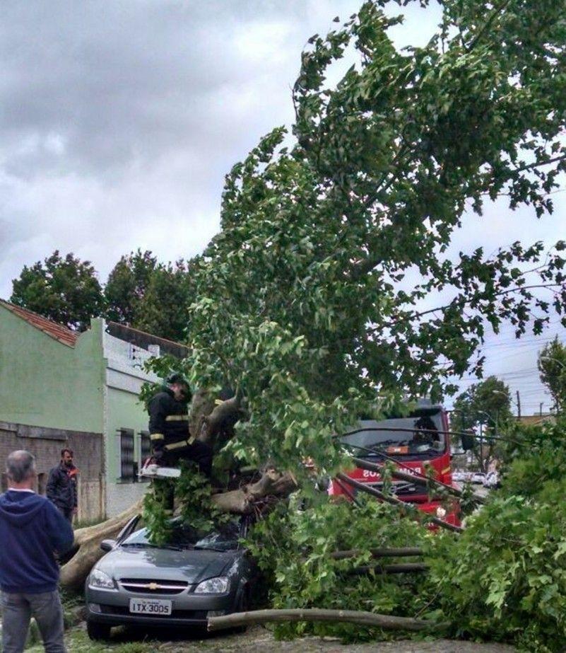 Soledade, registrou rajadas de vento de 132 km/h / Divulgação/Defesa Civil