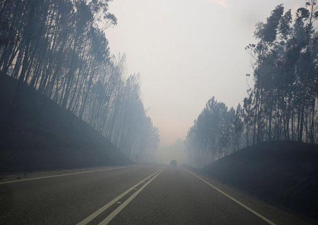 Grande quantidade de fumaça é vista em estrada onde ocorreu o incêndio