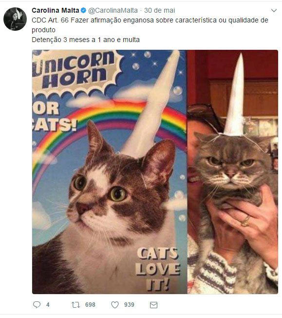 Juíza usa memes com animais para ilustrar Código Penal