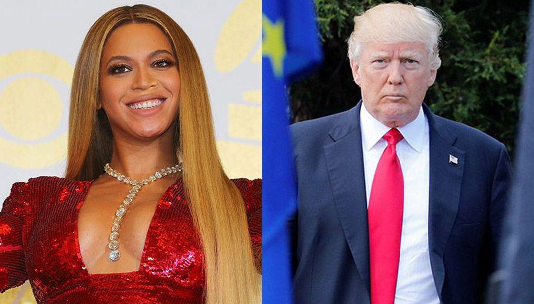 Espécies de animais são nomeadas em homenagem a Beyoncé e Trump