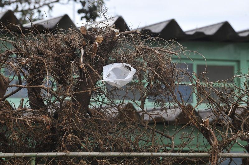 Argentina economiza 250 milhões de sacolas plásticas